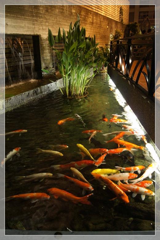竹北高鐵美食-新竹黃金海岸活蝦之家