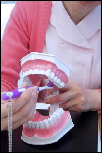 台中牙醫推薦-牙醫
